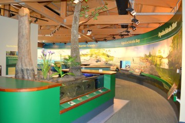 Image of the Apalachicola National Estuarine Research Center.