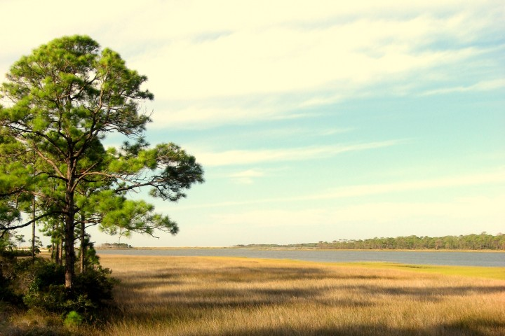 Image of the water and Apalachicola WEA - Sand Beach.