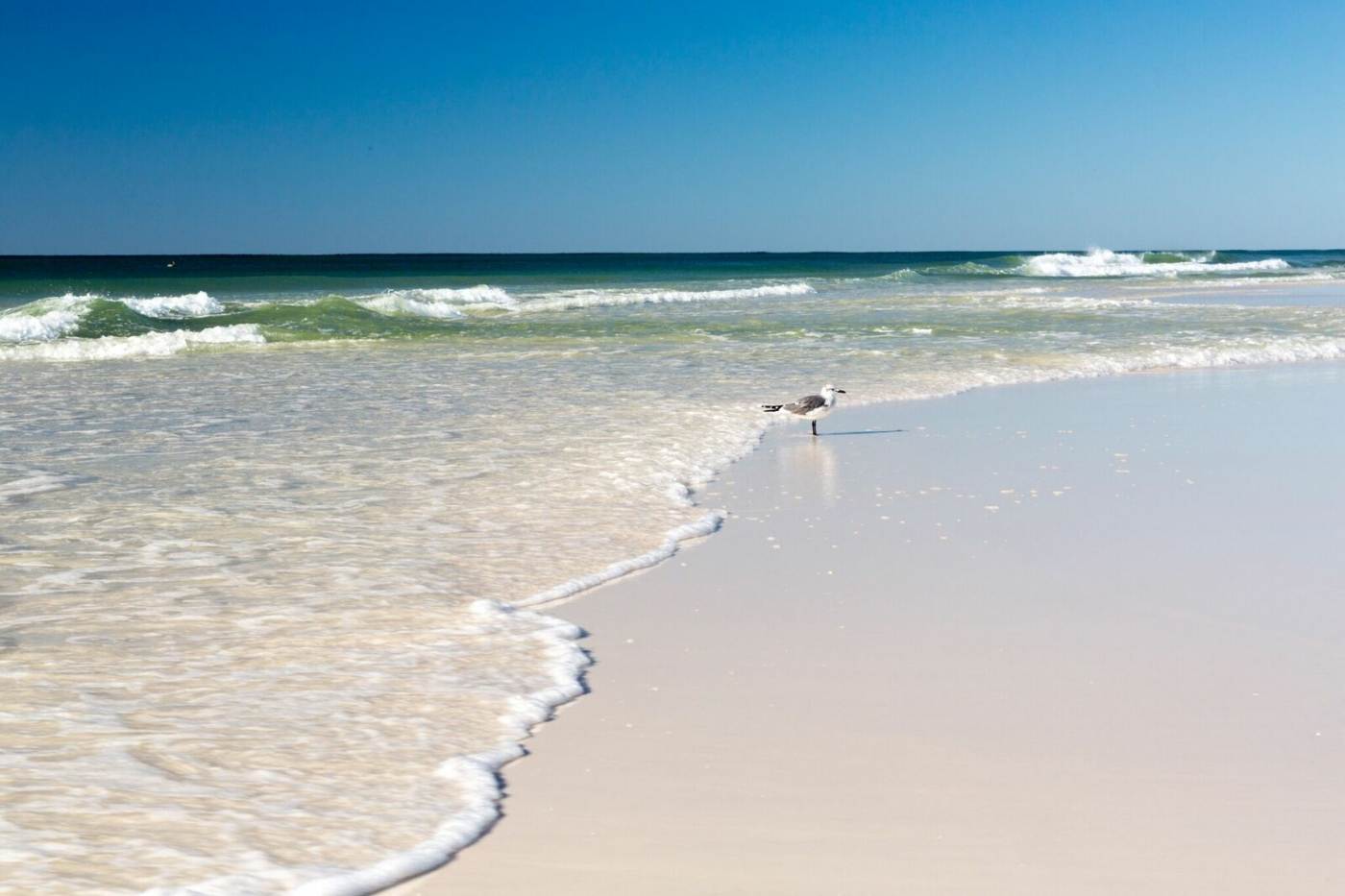 Image of shoreline of South Walton beach.
