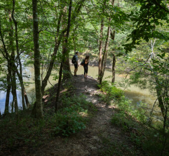 Image of people following a hiking trail along the water.