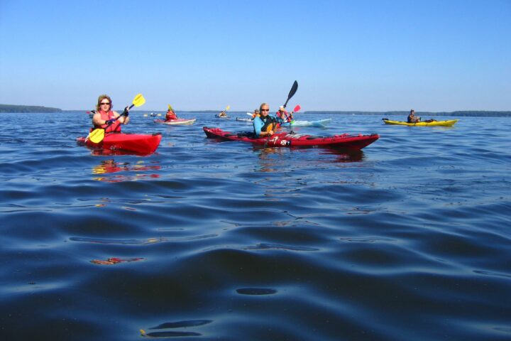 Image of kayakers paddling as a group.