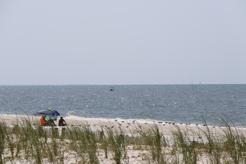 Image of people sitting under an umbrella at the waters edge in Mexico Beach..