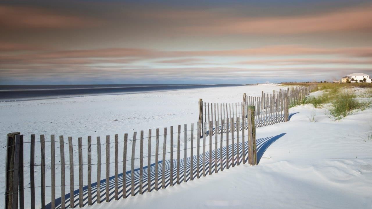Image of white sand beach with dune fences on Mexico Beach.