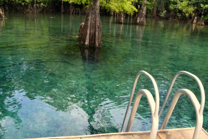 Image of the water at Morrison Springs.