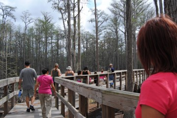 Image of people walking on one of the walkways at Pine Log State Forest.
