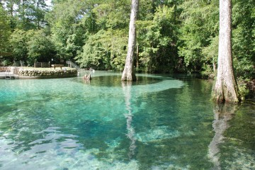 Image of the water at Ponce De Leon Springs.