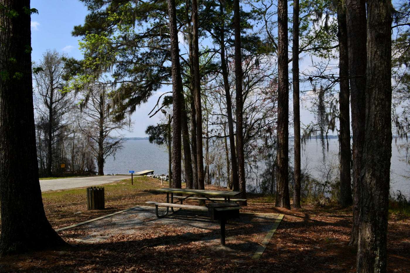 A primitive camping site along the water.