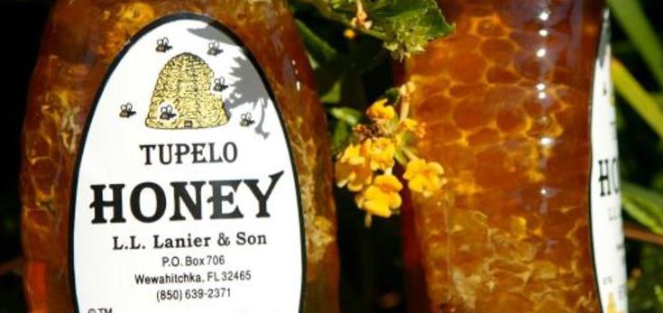 Image of bottles of LL Lanier Son Tupelo honey.